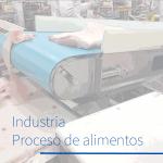 Industria del proceso de alimentos
